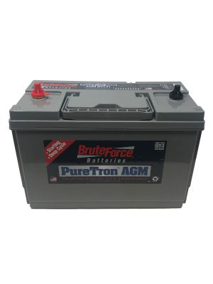BRUTE FORCE PURETRON AGMBPL31S 12V COMMERCIAL STARTING/DUAL PURPOSE