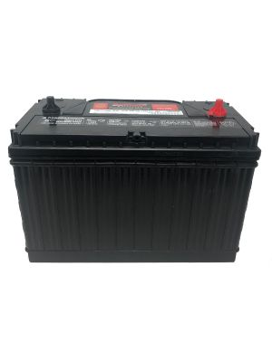 BRUTE FORCE COMMERCIAL 12V 31S MAINTENANCE FREE